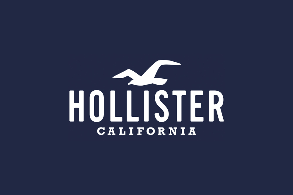 Hollister Co. Casting for Models